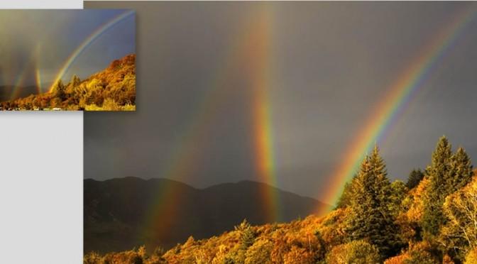 4本同時にかかる虹が美しすぎる。2本同時に見ただけで幸せになれるのに。