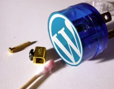 wp-plug-in